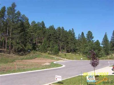 LOT 8 GRANITE POINT CT, Keystone, SD 57751 - Photo 1