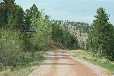 TBD ABE PL, Keystone, SD 57751 - Photo 2