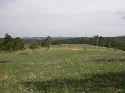TBD RUSHMORE RANCH RD, Keystone, SD 57751 - Photo 2