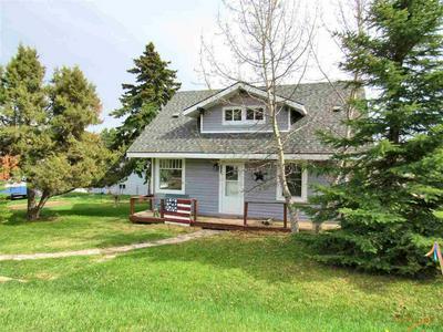 132 HARNEY ST, Custer, SD 57730 - Photo 1