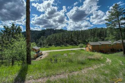 LOT 14 GRANITE POINT CT, Keystone, SD 57751 - Photo 2