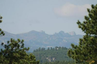 TBD LOST CAVE RD, Keystone, SD 57751 - Photo 1