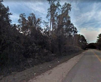 309 HOOT OWL RD, Satsuma, FL 32189 - Photo 1