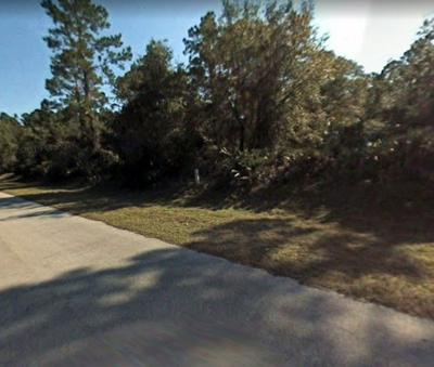 339 PARADISE BLVD, Georgetown, FL 32139 - Photo 2