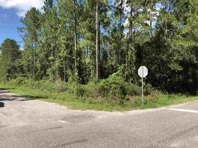 10060 DILLON AVE, Hastings, FL 32145 - Photo 1