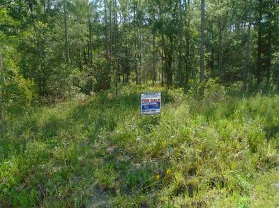 4450 CEDAR FORD BLVD # 1, Hastings, FL 32145 - Photo 1