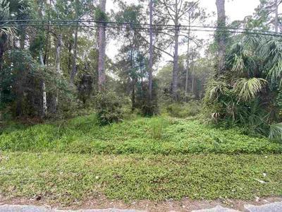 540 N MCLAUGHLIN ST, St Augustine, FL 32084 - Photo 2