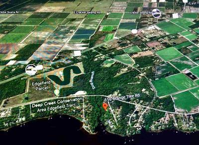 116 ORANGE TREE RD, East Palatka, FL 32131 - Photo 1