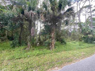 540 N MCLAUGHLIN ST, St Augustine, FL 32084 - Photo 1