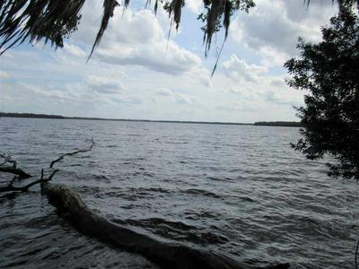 0 UNASSIGNED LOCATION, WELAKA, FL 32193 - Photo 1