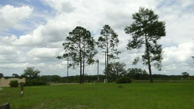 101 VILLAGE DR, Welaka, FL 32193 - Photo 2