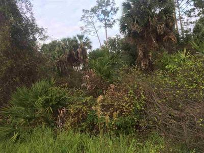 11 BIRD LAND PL, Palm Coast, FL 32137 - Photo 2