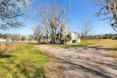 9710 LUTHER BECK RD, Hastings, FL 32145 - Photo 2