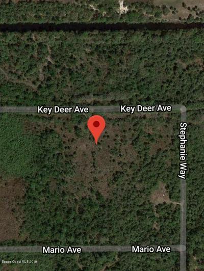 6681 KEY DEER AVE, Cocoa, FL 32926 - Photo 1