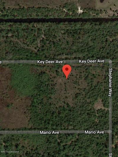 6681 KEY DEER AVE, Cocoa, FL 32926 - Photo 2