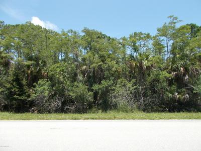 0000 GRANT ROAD, Grant, FL 32949 - Photo 1