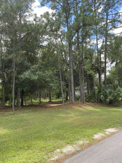 466 SAUL RD SW, Palm Bay, FL 32908 - Photo 1