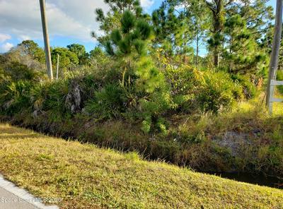 00 BRABROOK AVENUE, Grant, FL 32949 - Photo 2