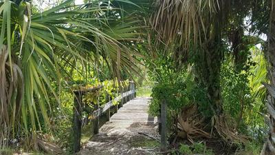 2525 MALABAR RD, Malabar, FL 32950 - Photo 2