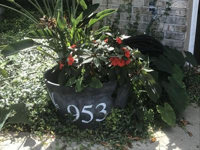 953 SABAL GROVE DR, Rockledge, FL 32955 - Photo 2
