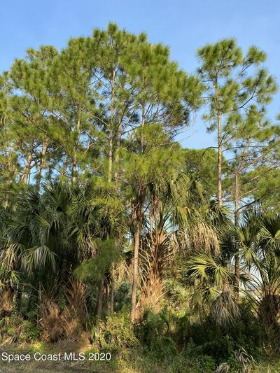 651 JAFFEE AVE SE, Palm Bay, FL 32909 - Photo 2