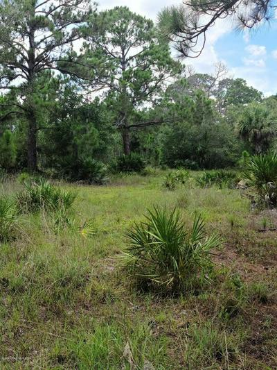 TBD 85TH STREET, Fellsmere, FL 32948 - Photo 2