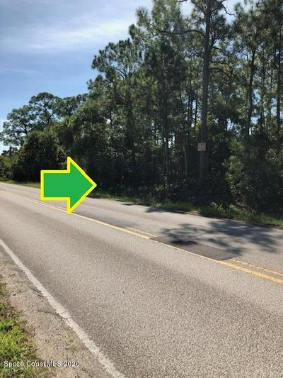 000LOT5.01 GRANT ROAD, Grant, FL 32949 - Photo 2