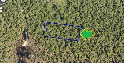 00000 NO ACCESS WEST OF EAGLES AVENUE, Grant, FL 32949 - Photo 1