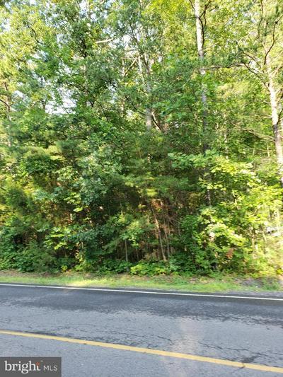 1335 LAKEVIEW PKWY, LOCUST GROVE, VA 22508 - Photo 1