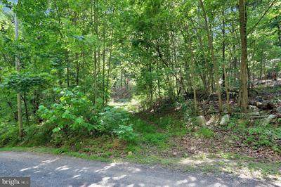 0 SHICKLE LN, GORE, VA 22637 - Photo 2