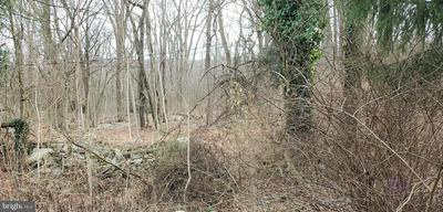 1131 STATE RD, DUNCANNON, PA 17020 - Photo 2