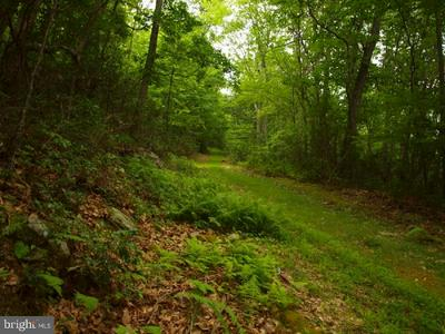 00 LONG MOUNTAIN RD., FRANKLIN, WV 26807 - Photo 1