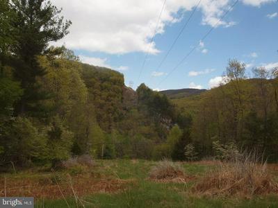 RT #220N- WILSON RIDGE, FRANKLIN, WV 26807 - Photo 1