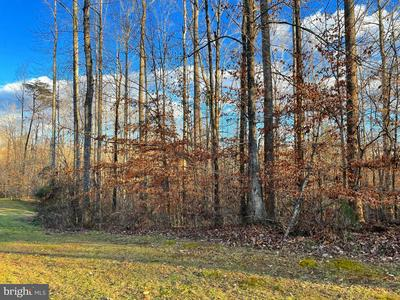 LOT 8 HAVERFORD DRIVE, RIXEYVILLE, VA 22737 - Photo 1