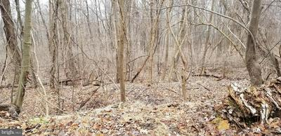 0 BERRY MOUNTAIN ROAD # LOT 6, MILLERSBURG, PA 17061 - Photo 2