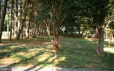 12516 PIEDMONT RD, CLARKSBURG, MD 20871 - Photo 1