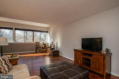 11248 CHESTNUT GROVE SQ APT 352, RESTON, VA 20190 - Photo 2