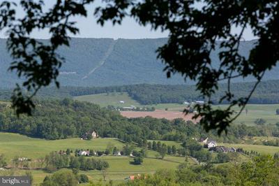 0 NOW LOOK LANE, NEW MARKET, VA 22844 - Photo 1