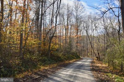 0 BESSIE BELL MOUNTAIN ROAD, CASTLETON, VA 22716 - Photo 2
