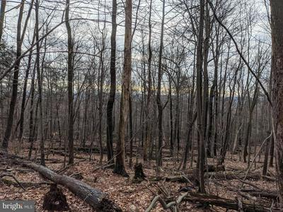 0 E APPALACHIAN DRIVE, GRANTVILLE, PA 17028 - Photo 2