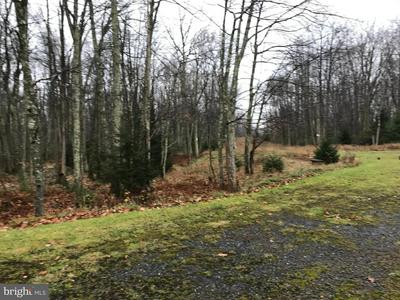 LOT#A2.17 HOSPITALITY WAY, LAKE HARMONY, PA 18624 - Photo 1