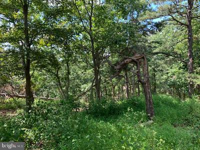 GLASGOW CT, BUSHKILL, PA 18324 - Photo 2