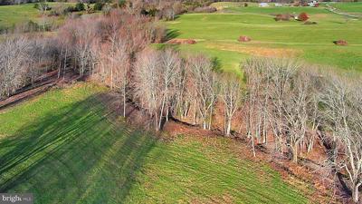 16439 HOLLY HILL FARM LANE, REVA, VA 22735 - Photo 2