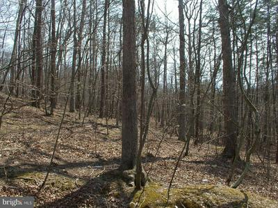 -LOT 68 WHISPERING KNOLLS, WINCHESTER, VA 22603 - Photo 2