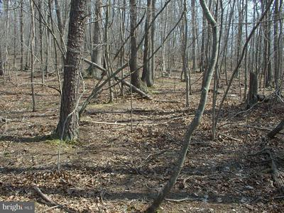 -LOT 68 WHISPERING KNOLLS, WINCHESTER, VA 22603 - Photo 1
