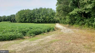 11.638 ACRES LOG CABIN ROAD, MILFORD, DE 19963 - Photo 2