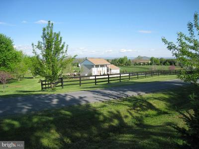 65 CATFISH TRL, NEW MARKET, VA 22844 - Photo 2