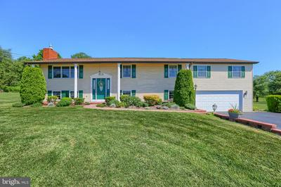 1250 OLD MOUNTAIN RD, WELLSVILLE, PA 17365 - Photo 1