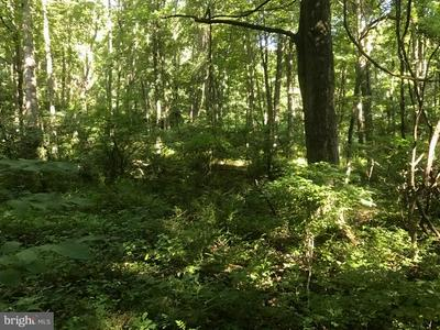 TIMBERLINE DR., LOST CITY, WV 26810 - Photo 1