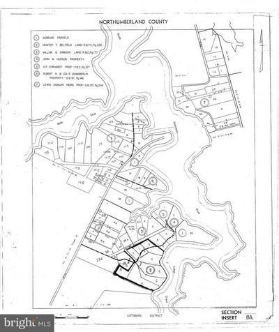 PLANTATION RD, CALLAO, VA 22435 - Photo 1